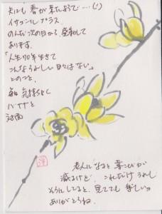 洋子の葉書